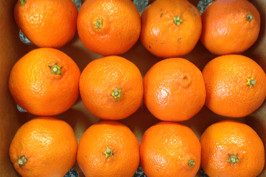 promote healthy skin with clementine oil