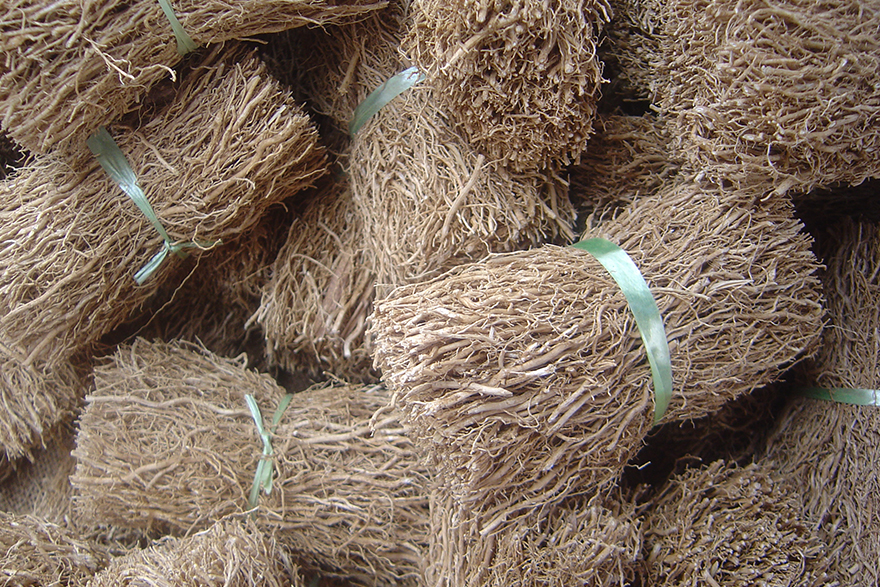 Image of Vetiver Root